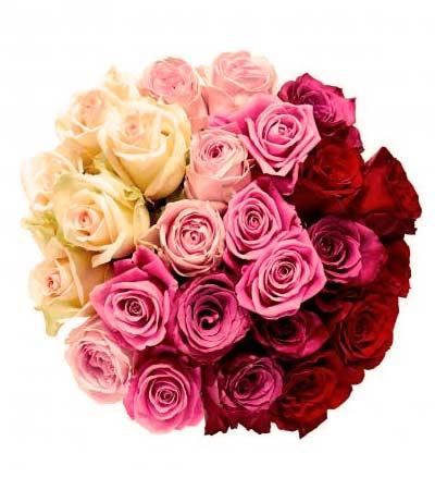 Comprar rosas a domicilio en Concha Espina Madrid - Flores Pili Bernabéu