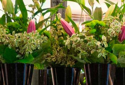 Flores y plantas empresas
