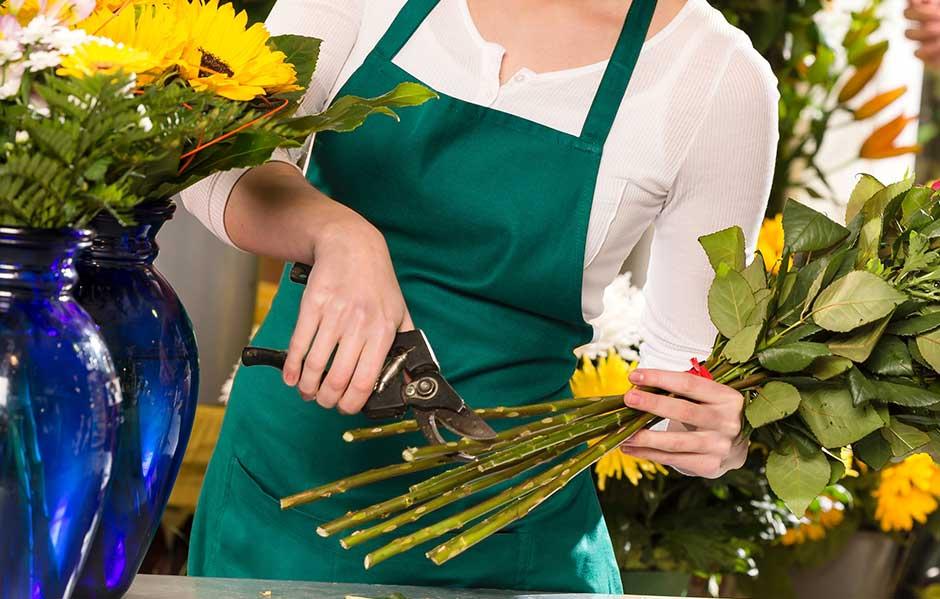 Flores y cuidados